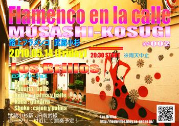 flamencoEnLaCalle_02_500.jpg